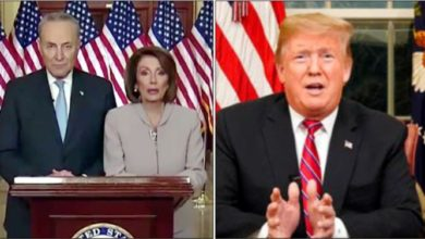 Trump, Nancy Pelosi